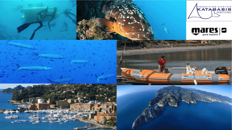 Katabasis Freediving Center cambia: dall'Elba a Portofino