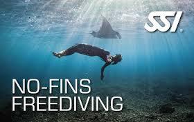 Specialità No Fins SSI Freediving