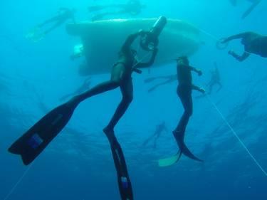 Allenamenti Apnea Atleti Katabasis Freediving Portofino